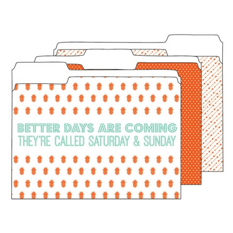 Ann Page Orange and Mint File Folders