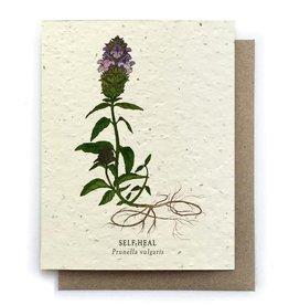 Bower Studio Self-Heal Seed Card