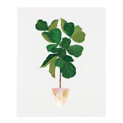 our heiday fiddle leaf fig tree print 8 x 10