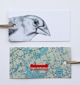 Lecanotrouge Thomasin Healing Evening Grosbeak Tag