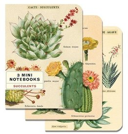 Cavallini Papers Mini Succulent Notebooks, Set/3