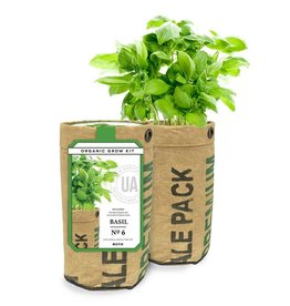 Urban Agriculture Basil Grow Kit