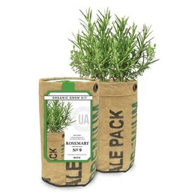 Urban Agriculture Rosemary Grow Kit