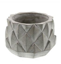 HomArt Sago Cement Planter