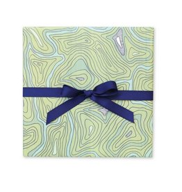 Page Stationery Topographic Gift Wrap