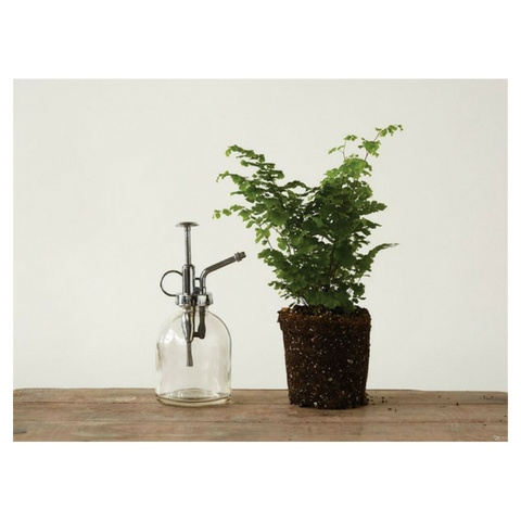 Creative Co-op Glass Plant Mister
