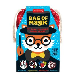 Hachette Book Group Bag of Magic