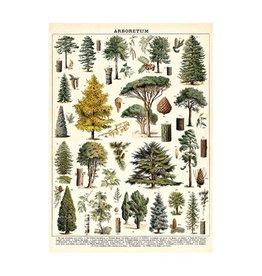 Cavallini Papers Arboretum Wrap Sheet