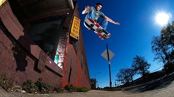 Luis T Backlip