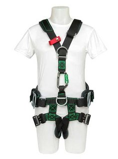 Buckingham Mfg BUCK Access Tower Harness