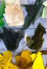 JUNE 19 Tuesday WORKSHOP Natural Plant Dye