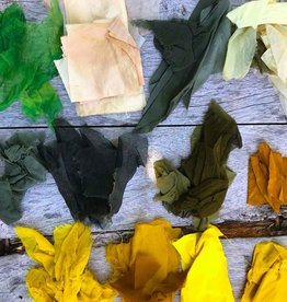 JUNE 19 Tuesday WORKSHOP Natural Plant Dye