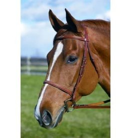 HENRI DE RIVAL LEATHER HDR Fancy Stitch Bridle Size Horse Oakbark