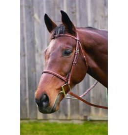 HENRI DE RIVAL LEATHER HDR Advantage Plain Raised Bridle Size Horse Oakbark