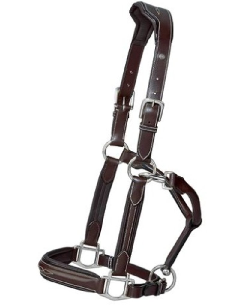 HENRI DE RIVAL LEATHER HDR Pro Padded Leather Halters
