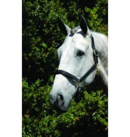 Vespucci Double Raised Padded Leather Halter
