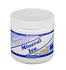 Mane N' Tail Mineral Ice Liniment Gel