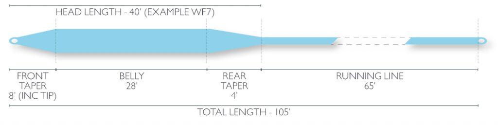 Airflo Airflo Cold Saltwater Striper Fly Line