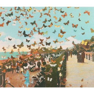 The Butterfly Man in Eastbourne