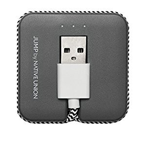 Native Union Lightning Jump Cable