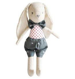 Louie Bunny