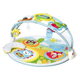 Skip Hop Tapis d'Activités Explore & More de Skip Hop/Skip Hop Explore & More Amazing Arch Activity Gym