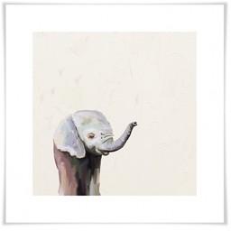 Oopsy Daisy Toile 14x14 Bébé Éléphant Encadrée de Oospy Daisy/Oopsy Daisy 14x14 Silver Leaf Framed Baby Elephant Canvas Wall Art