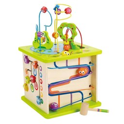 Hape Hape - Cube des Petits Insectes/Country Critters Play Cube