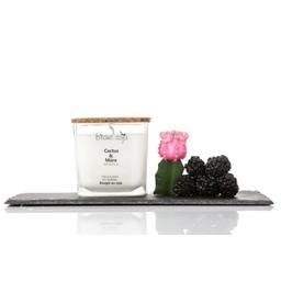 BlancSoja Bougie au Soja Cactus et Mûre de Blanc Soja, 420 ml/Blanc Soja Cactus and Blackberry Soja Candle, 420 ml