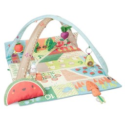 Skip Hop Skip Hop - Tapis d'Activités Fruits et Légumes/Farmstand Grow and Play Activity Gym