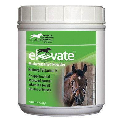 Elevate Maintenance Powder - 2lb