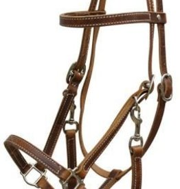 Showman Showman Leather Halter Bridle Combo