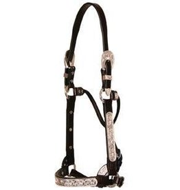 Circle Y of Yoakum Sterling Silver Show Halter, Raised Scroll, Dk Oil - Horse