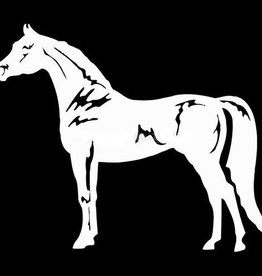 GT Reid Arabian Horse Vinyl Decal
