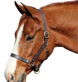 Tuffrider Henri de Rivel Advantage Leather Halter