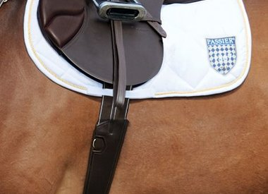 Stirrup Leathers & Irons