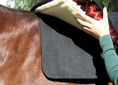 Saddle Pads & Blankets
