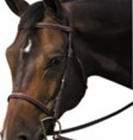 HDR Henri de Rivel Pro Plain Raised Bridle with Laced Reins - Horse Size (Reg $79.95 NOW 40% OFF)