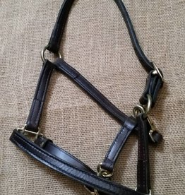 Lamprey Leather Pony Halter Brown Pony