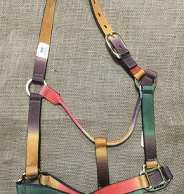 Lamprey Autumn Rainbow AHE Halter