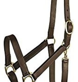 Lamprey Yearling Wide Leather Halter