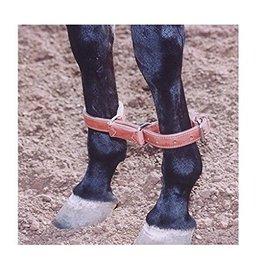 Circle L Circle L Leather Training Hobbles, L.Oil - Horse Size