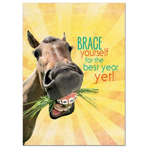 Gt Reid Birthday Card Brace Yourself B Day Gift Gass Horse