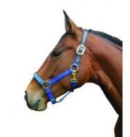 Intrepid International Nylon Halter w/Black Nose Pad