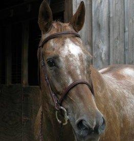 Smith Worthington Saddlery Wexford Raised Bridle Havana Horse (Reg $44.95 NOW 40% OFF)