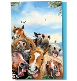Tree-Free Greetings 12ct Boxed ECOnotes - Horse Selfie
