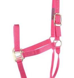 Dumor Nylon Pony/Colt Halter - Pink