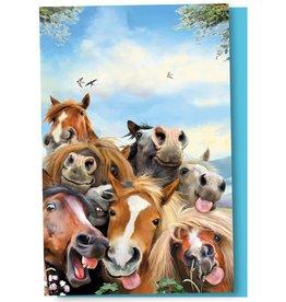 Tree-Free Greetings EnoNotes - Horse Selfie 12/ct Boxed