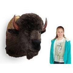 Trophy Buffalo Head