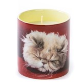 "Seletti Candle in Jar of Porcelain ""Kitten"" -- Essence ""Fluffy"""